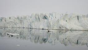 格陵兰的本质和风景 股票视频