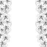 桂皮瘘-在白色背景的金黄阵雨花与拷贝空间 也corel凹道例证向量 库存照片