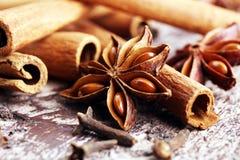 桂香、八角茴香和丁香 在木背景的冬天香料 免版税图库摄影