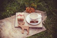 桂香咖啡牛奶 姜饼干和咖啡 秋天概念查出的白色 麋曲奇饼 库存照片