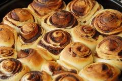 桂香小圆面包 库存照片