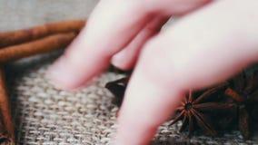 桂香标尺和八角在老布料,妇女采取用她的手茴香 影视素材