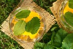 桃子、香蜂草和白葡萄酒拳打或者致冷机 库存图片