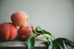 桃子果树园15 免版税图库摄影
