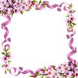 桃子花和丝绸丝带框架的春天枝杈 库存照片