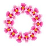 桃红色万代兰属小姐Joaquim Orchid Wreath 新加坡国民花 也corel凹道例证向量 库存例证