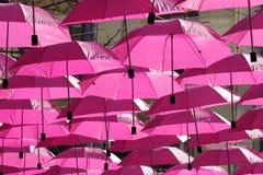 桃红色伞 库存照片