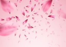 桃红色佐仓落的瓣背景 也corel凹道例证向量
