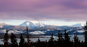 桃红色冬天覆盖湖Laberge育空风景 免版税库存照片