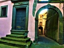 桃红色和中世纪大厦在维托尔基亚诺镇,维泰博,意大利省  免版税库存图片