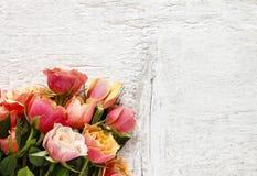 桃红色和橙色玫瑰花束在白色背景的 免版税库存图片