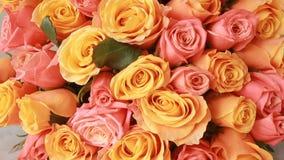 桃红色和橙色玫瑰,特写镜头水多,五颜六色的花束  股票录像