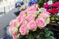 桃红色和淡绿色的玫瑰花束在一个花摊位的在巴黎, 免版税库存照片