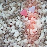 桃红色和爱的蓝色心脏 库存照片