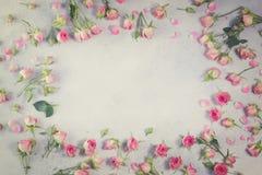 桃红色和白玫瑰花 免版税库存照片