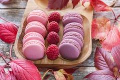 桃红色和白色通心面用莓和一朵美丽的玫瑰色花 点心特写镜头 免版税库存照片