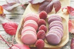 桃红色和白色通心面用莓和一朵美丽的玫瑰色花 点心特写镜头 库存图片