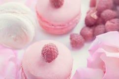 桃红色和白色通心面用莓和一朵美丽的玫瑰色花 点心特写镜头 免版税库存图片