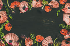 桃红色和红色花瓣、分支和叶子,拷贝空间 图库摄影
