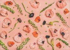 桃红色和红色花瓣、分支和叶子,顶视图 图库摄影