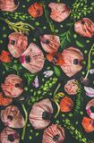 桃红色和红色花瓣、绿色分支和叶子 免版税库存照片