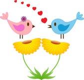 桃红色和蓝色鸟,黄色花 库存图片