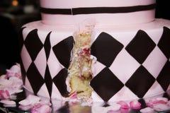 桃红色和黑专业蛋糕 库存照片