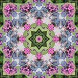 桃红色和紫色波浪喇叭花万花筒 免版税库存图片