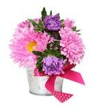桃红色和紫色翠菊在一个小金属桶开花 库存图片