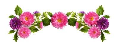 桃红色和紫色翠菊花和芽构成 库存图片