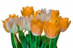 桃红色和黄色郁金香新鲜的春天假日花束  库存图片