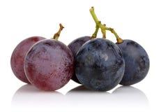 桃红色和黑葡萄 库存图片