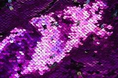 桃红色圈子衣服饰物之小金属片样式纹理背景和纹理 免版税库存照片