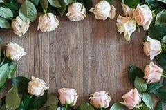 桃红色在木背景的玫瑰框架 春天题材的背景 免版税库存图片