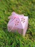 桃红色在绿草的被雕刻的礼物盒 免版税库存图片