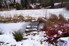 桃红色城堡、冻水和小石桥梁 图库摄影