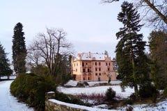 桃红色城堡和杜鹃花 免版税库存图片