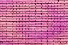 桃红色墙壁 库存照片