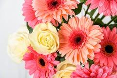 桃红色大丁草花和白玫瑰花束 图库摄影