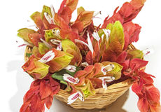 桃红色大虾厂的花柳条筐的 库存图片