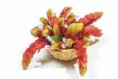 桃红色大虾花显示在柳条筐的 免版税库存照片