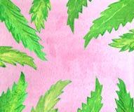桃红色天空和绿色棕榈叶 向量例证