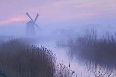 桃红色天空在荷兰 免版税库存图片