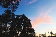 桃红色天空月亮 免版税库存图片