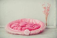 桃红色宠物床垫在屋子里 库存图片