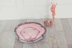 桃红色宠物床垫在屋子里 免版税库存照片