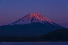 桃红色山顶富士山 库存图片