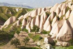 桃红色岩石在一个晴朗的夏日 免版税库存图片