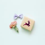 桃红色干燥花和礼物在浅绿色的背景 免版税库存图片