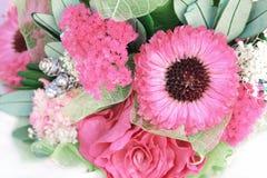 桃红色干花花束背景 库存图片